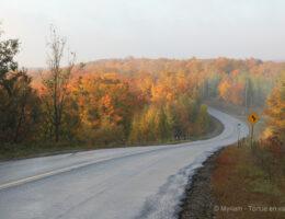 Route automne Ontario